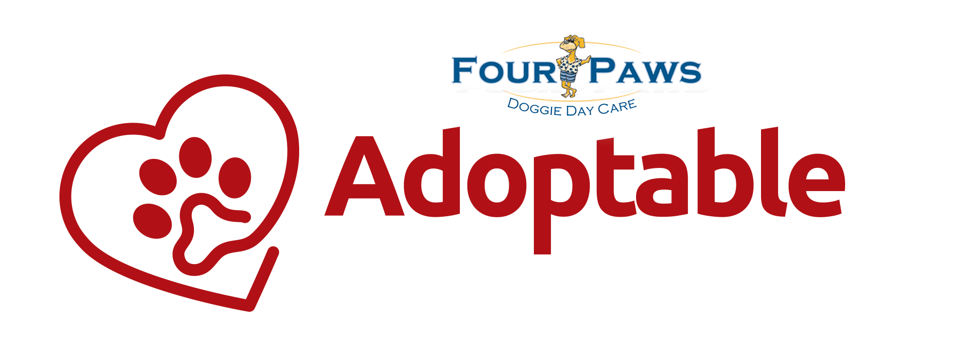 Four Paws Doggie Daycare Adoptable Pet of the Week